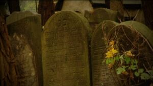 Wysprzątają Cmentarz Żydowski
